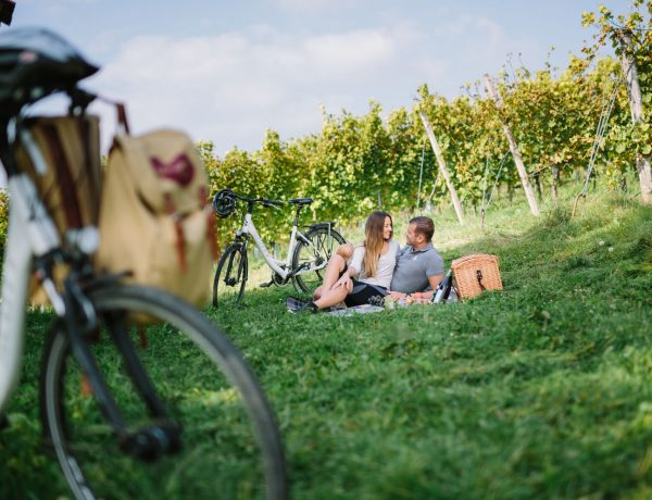 Radfahren in der Steiermark mit Picknick im Weingarten