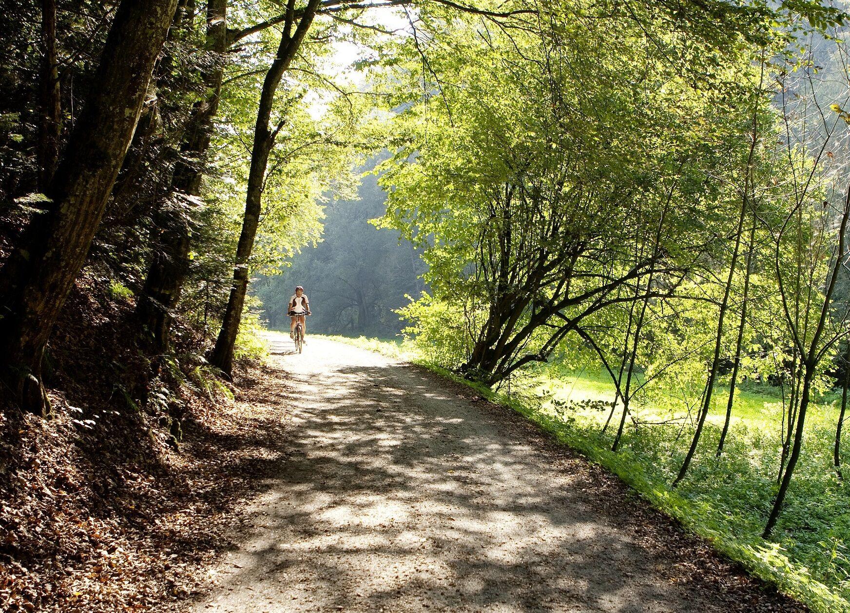Radfahren in der Steiermark - Genussradeln in der Steiermark